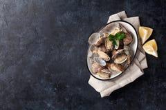 Fresh seafood bowl on stone table. Scallops Royalty Free Stock Photos