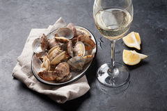 Fresh seafood bowl on stone table. Scallops Royalty Free Stock Image
