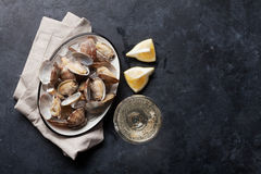 Fresh seafood bowl on stone table. Scallops Royalty Free Stock Photography