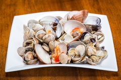 Fresh seafood, clams and cockles prepared Stock Photography