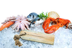 Fresh seafood on crushed ice Royalty Free Stock Photography