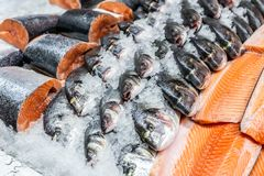 Fresh seafood on crushed ice at fish market. Raw dorado, seabass and salmon fillet on display counter at store. Fish filleting.  royalty free stock photo