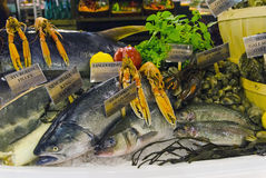 Fresh seafood display Stock Image