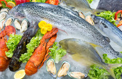 Fresh seafood displayed on crushed ice Stock Images