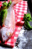 Fresh seafood fish for cook recipe Royalty Free Stock Photography