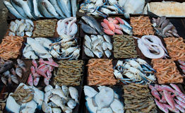 Fresh seafood at a fish market Royalty Free Stock Image