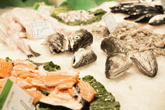 Fresh seafood in the fish market Stock Photo