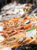 Fresh seafood at fish market Royalty Free Stock Images