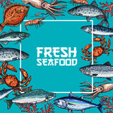 Fresh seafood and fish sketch poster design. Fresh seafood and fish poster. Crab, salmon, shrimp, tuna, squid, mackerel and herring fish sketches frame with text Stock Photo