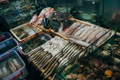 Fresh seafood from fish, squid, lobster for food. In Asia Royalty Free Stock Photo