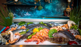 Fresh seafood and fishes lying on ice in the shwcase. Rethymno on Crete island, Greece Stock Images