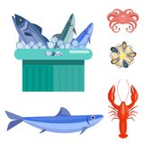 Fresh seafood flat vector illustration fish gourmet delicious restaurant cooking gourmet sea food meal. Royalty Free Stock Photography
