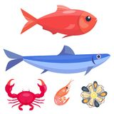 Fresh seafood flat vector illustration fish gourmet delicious restaurant cooking gourmet sea food meal. Royalty Free Stock Images
