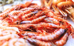 Fresh seafood in a food market of Barcelona.  Royalty Free Stock Photo