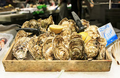 Fresh seafood in a food market of Barcelona Royalty Free Stock Photography