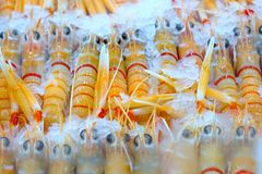 Fresh Seafood : Group Of Big Shrimps On Ice at fish market in Sy Stock Photo