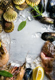 Fresh seafood with herbs and lemon on ice. Prawns, fish, mussels, scallops over steel metal background. Top view, copy Stock Images