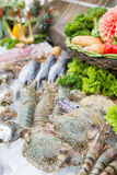 Fresh seafood on ice for cooking in restaurant Stock Images