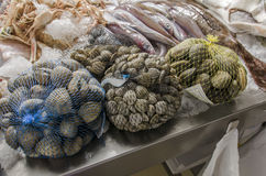 Fresh seafood on ice at the fish market.  Royalty Free Stock Images
