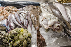 Fresh seafood on ice at the fish market.  Royalty Free Stock Photography