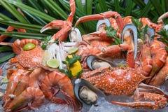 Fresh seafood on ice Stock Image