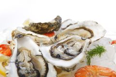 Fresh seafood on ice Royalty Free Stock Image
