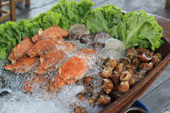 Fresh Seafood on ice. At the restaurant Stock Photo