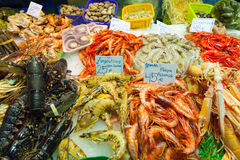 Fresh  seafood  on market counter. Fresh lobster and other seafood  on market counter Stock Images