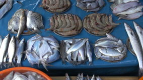 Fresh seafood market in Kochi, India stock footage