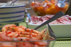 Fresh seafood, meat and salad lunch Stock Image