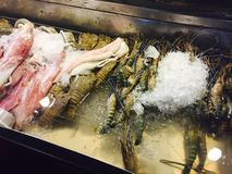 Fresh seafood at night market in Hua Hin Royalty Free Stock Photo