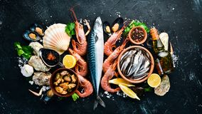 Free Fresh Seafood On A Stone Background. Fish, Shrimp, Mussels, Caviar. Stock Photography - 151179952
