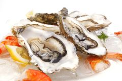 Fresh Seafood On Ice Stock Photos