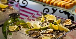 Fresh Seafood Oysters and Lemon on ice for catering. At Corporate gala dinner banquet event Royalty Free Stock Photo