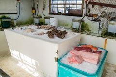Fresh seafood in Pearson's Port. At Newport Beach, California stock image