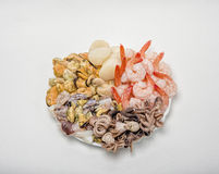 Fresh seafood on a plate. Great variety of fresh seafood lying on a plate Stock Photography