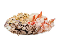 Fresh seafood on a plate. Great variety of fresh seafood lying on a plate Royalty Free Stock Photo