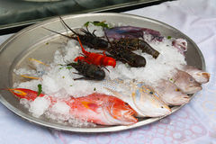 Fresh seafood on a plate Royalty Free Stock Images