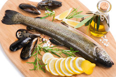 Fresh seafood. Fresh raw trout with  mussels, olive oil, spices and lemon on wooden cutting board   on white background Stock Images