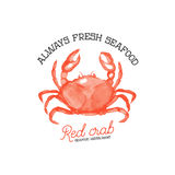 Fresh seafood. Red crab seafood restaurant.  Royalty Free Stock Photo