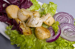 Fresh seafood salad Stock Images
