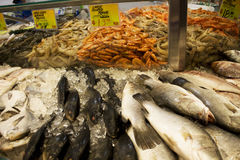 Fresh Seafood for Sale Royalty Free Stock Photos