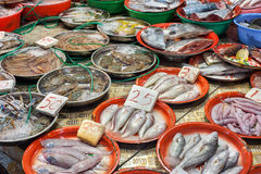 Fresh seafood on sale at a Hong Kong wet market stock image