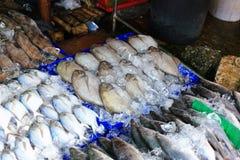 Fresh seafood on sale Royalty Free Stock Image