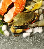 Fresh seafood: salmon steak, shrimps and crabs on stone background. With copy space Stock Photography