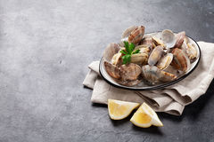 Fresh seafood. Scallops Royalty Free Stock Photography