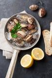Fresh seafood. Scallops Royalty Free Stock Photos