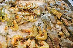Fresh seafood, shop counter, Pattaya, Thailand. Fresh seafood shop counter, Thailand Stock Photo