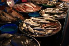 Fresh seafood shop Stock Images