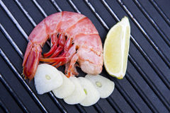Fresh seafood, shrimp Stock Photography